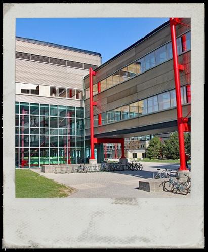 waterloo-university.png